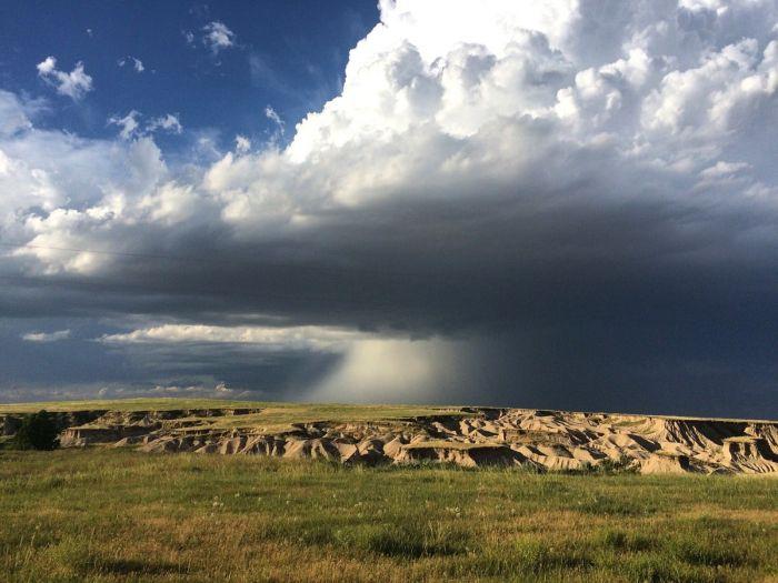 Nebraska Prairie #9