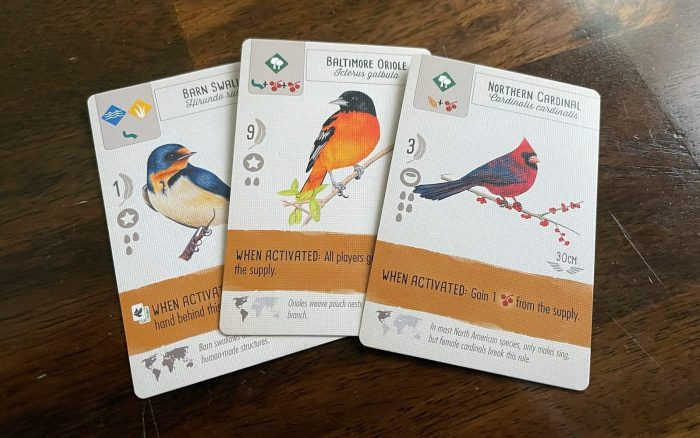 Wingspan Tabletop Game - Bird Cards