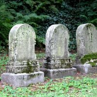 Is blogging dead? (No, not really...)