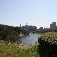 Notes from Japan, Part 4