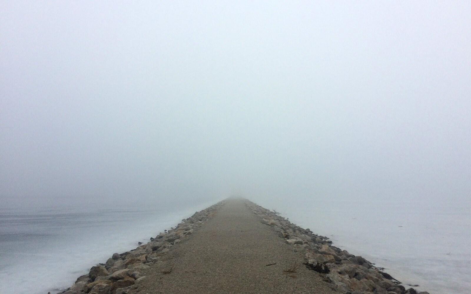 White Christmas Fog