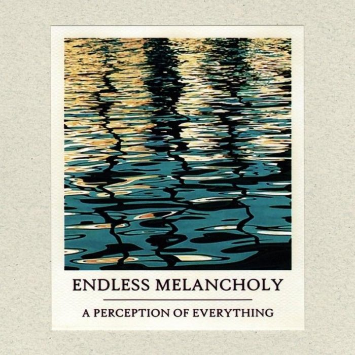 A Perception of Everything - Endless Melancholy