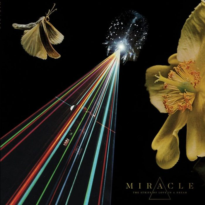 The Strife of Love in a Dream - Miracle