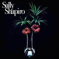 """Fading Away"" by Sally Shapiro"