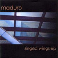 Singed Wings EP